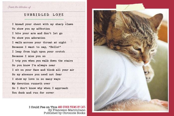 icpot-vd-poem